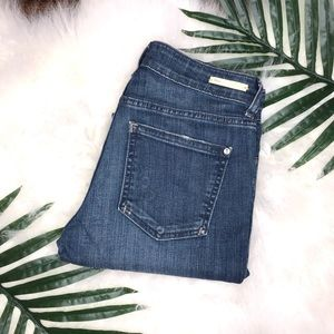 Anthropologie Pilcro skinny blue jeans